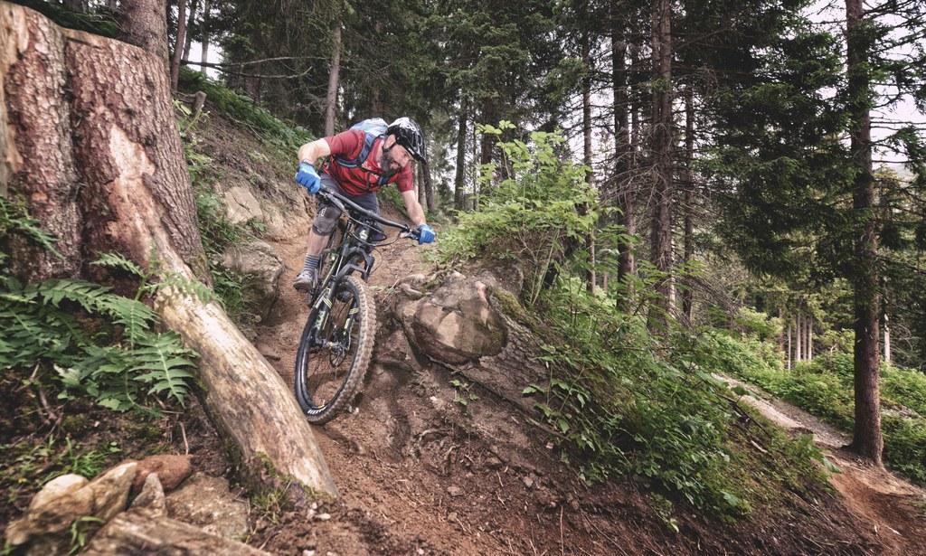 Eletrično polnovzmeteno gorsko kolo Bergamont
